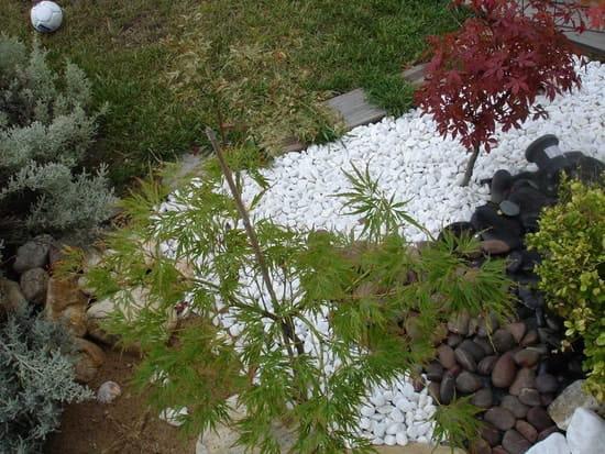 Comment faire un jardin zen fleurs Comment realiser un jardin zen