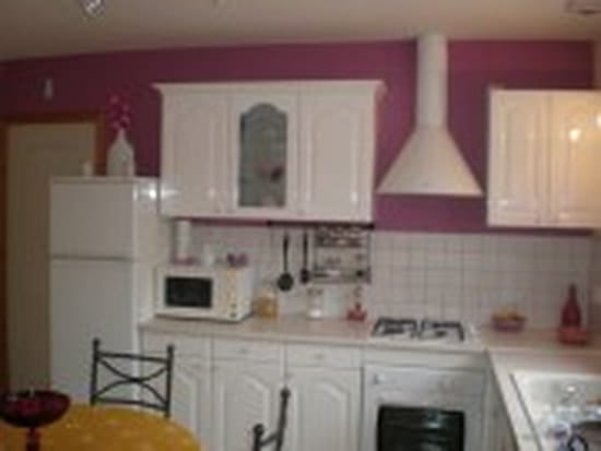 Quelle couleur mettre au mur de ma cuisine id es d co for Couleur gris perle cuisine