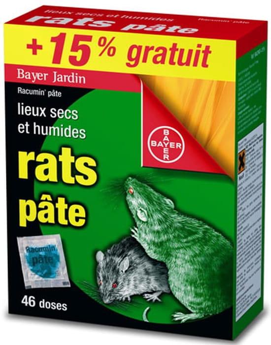 comment se d233barrasser des rats dans le jardin r233solu