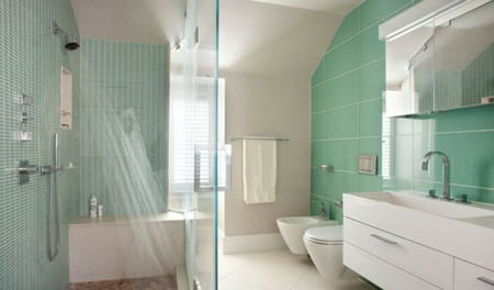 ggQm2JNF4adBhl6bYwklMnxmIPoJ3Sb3YRGMjunVjKUflFtCpS580VJKaOtu8pbi-carrelage-mural-salle-bains-petit-grand-format-vert-pale.png