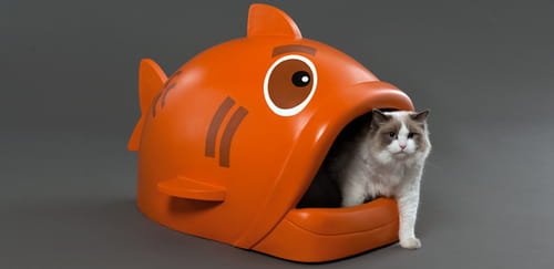 g1cc2a2M-litiere-pour-chat-poisson-s-.png