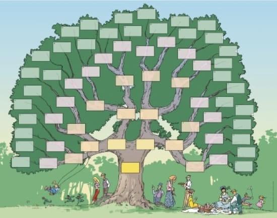 comment faire pour faire son arbre g n alogique g n alogie. Black Bedroom Furniture Sets. Home Design Ideas